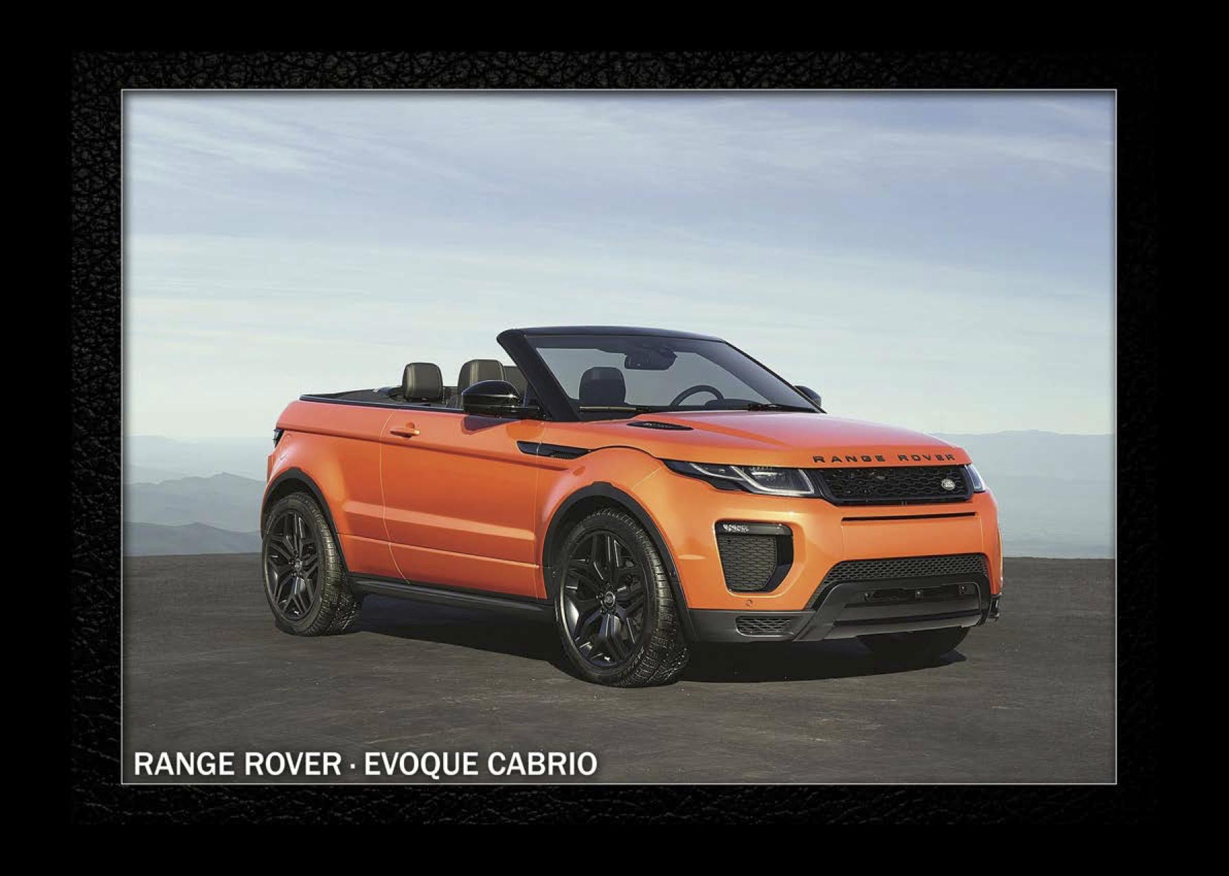 Luxury Car Rental 8