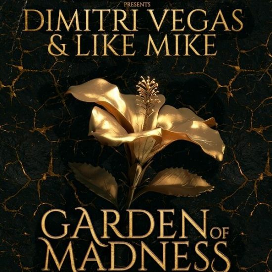 Tickets Ushuaia Dimitri Vegas